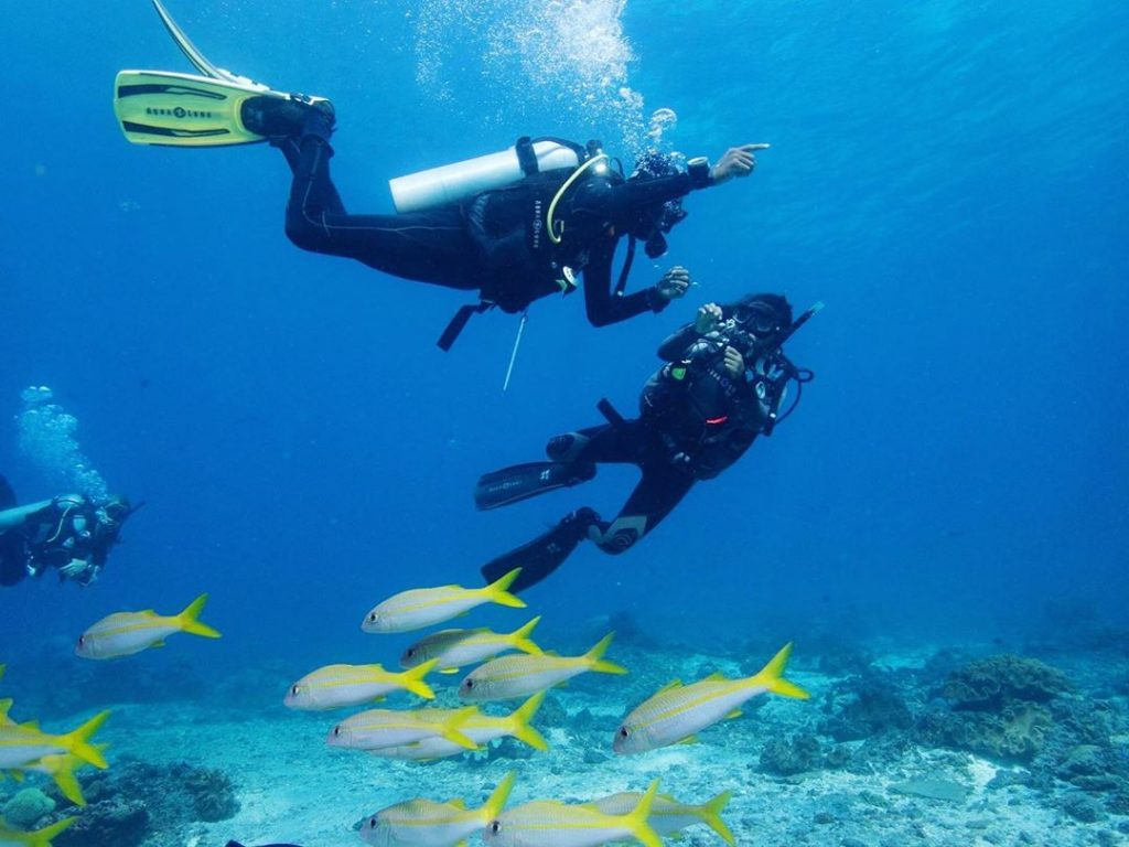 Scuba Diving Nusa Penida: Things You'll Know