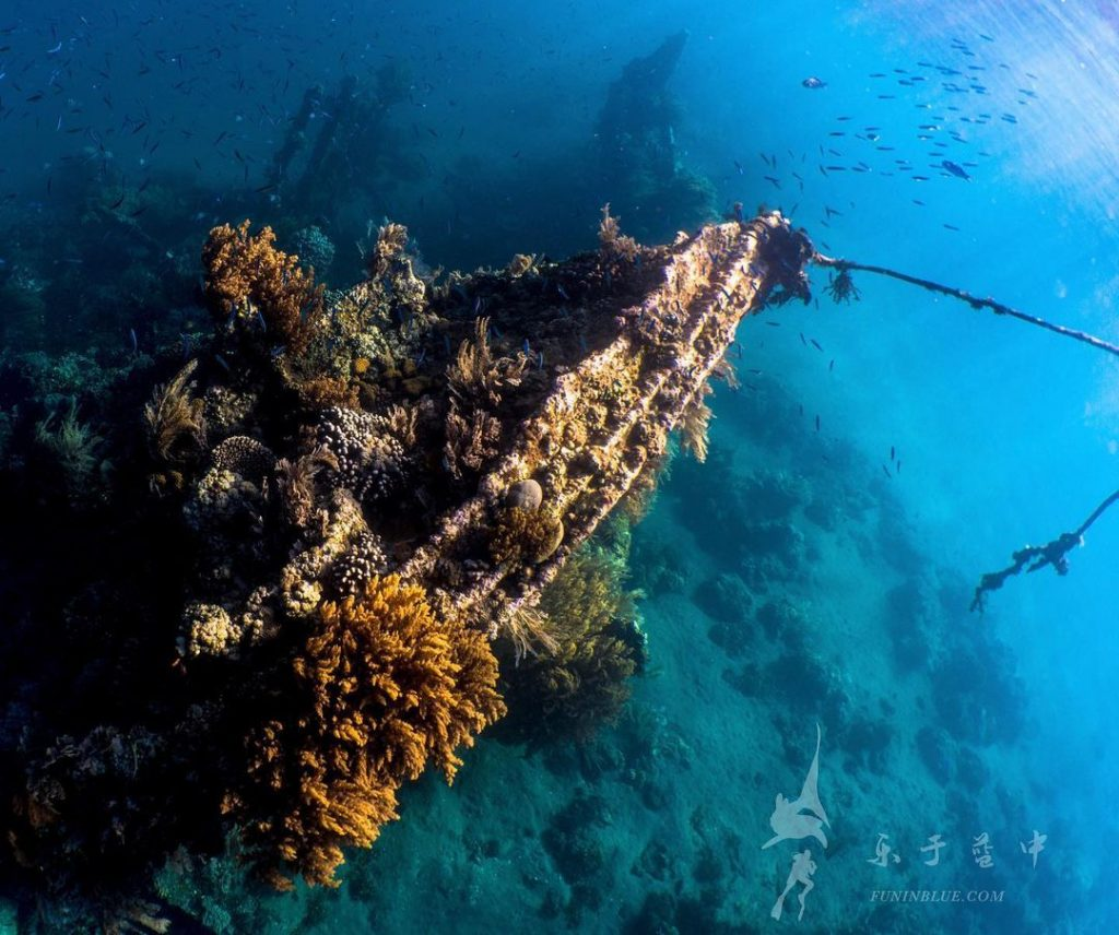 Dive the Beautiful Japanese Shipwreck