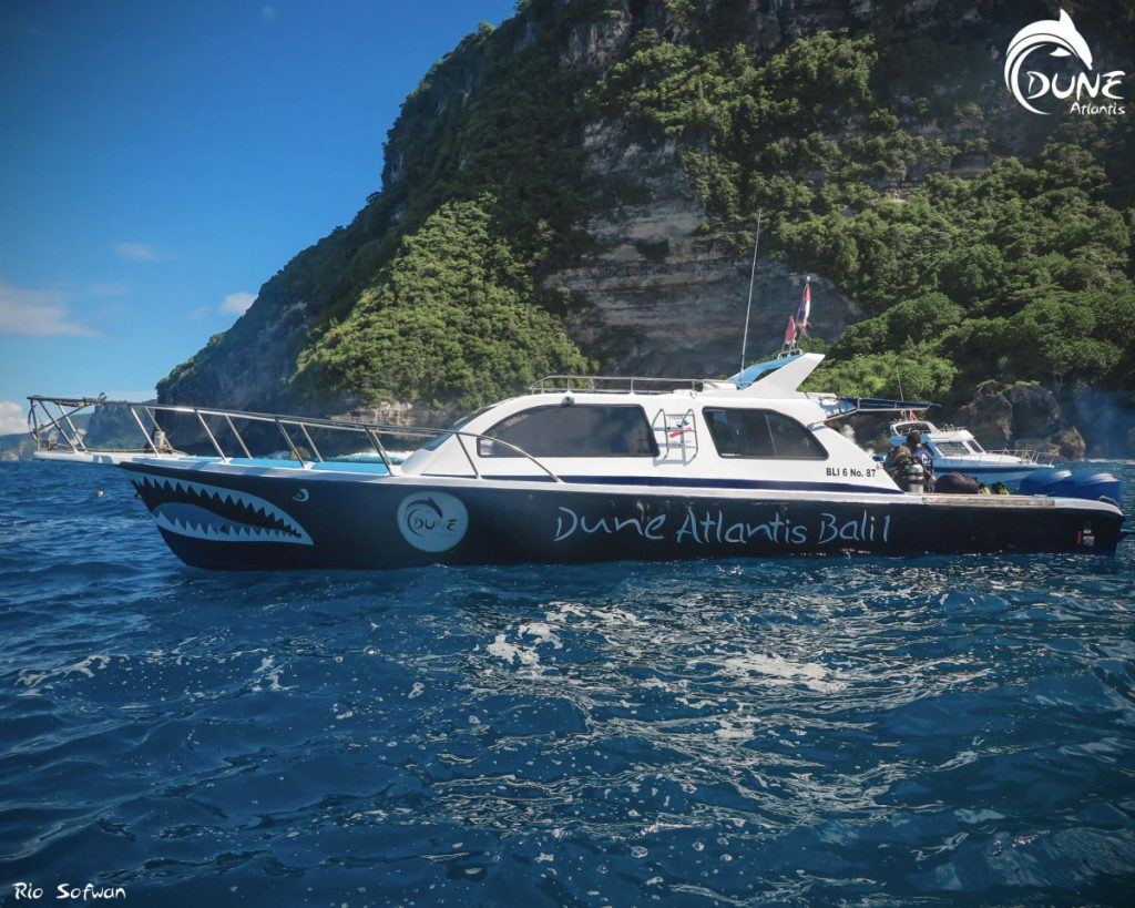 Find Bali Dive School or Operator for Your Adventure